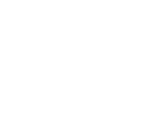 NHL - The Playoffs