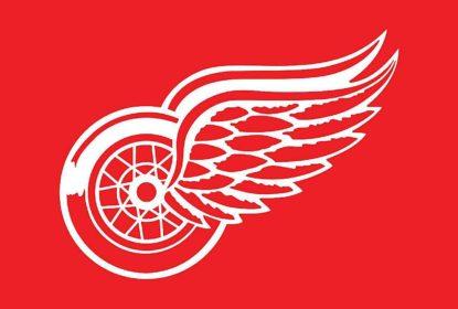 Detroit Red Wings denuncia uso de logo em protestos de grupos nazistas nos EUA - The Playoffs