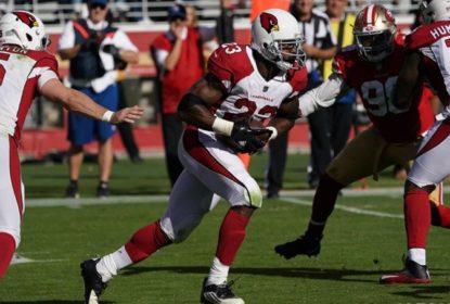 Peterson tem grande noite e Cardinals vencem os 49ers - The Playoffs
